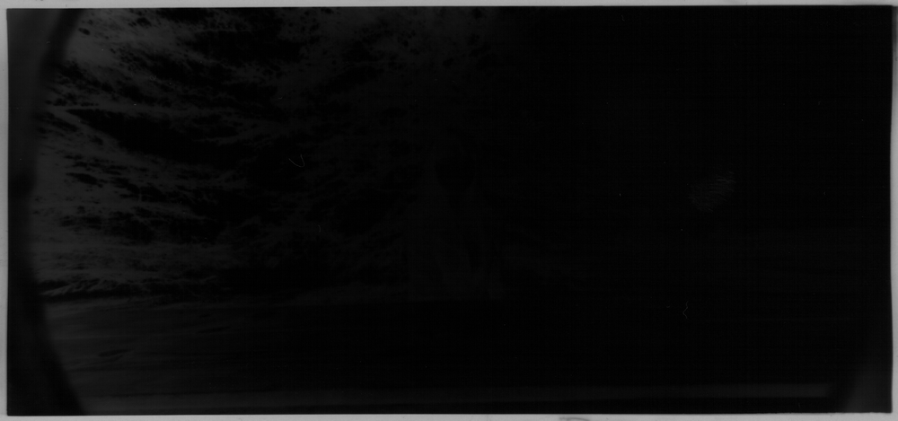 scan of film negative